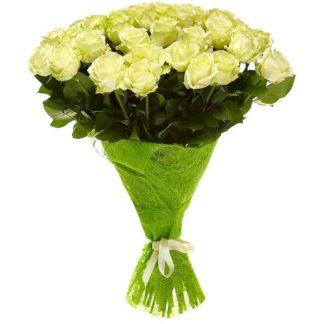 33 бело-зеленые розы