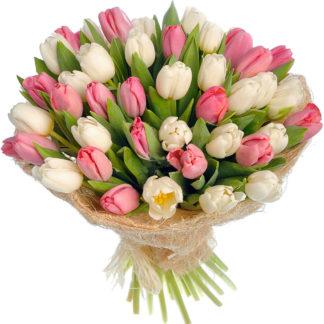 50 крупных тюльпанов микс