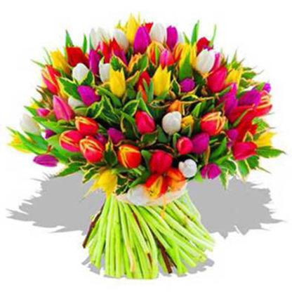 75 тюльпанов микс